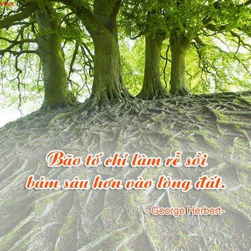 Khong nan chi